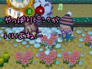 RUU_0093_20090126202446.jpg