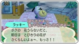 RUU_0111_20090828114739.jpg