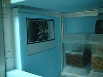 温室クーラーボックス内部