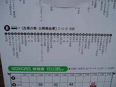 P8010184-1.jpg