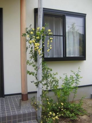 2007050302.jpg