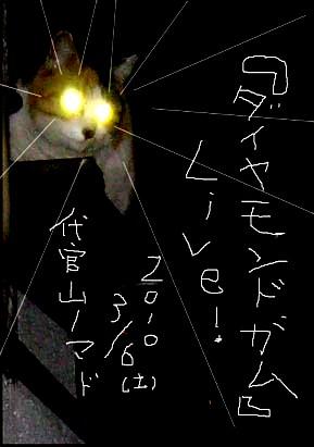 ライブ告知塀の上の猫編ビーム3.JPGはがき修正