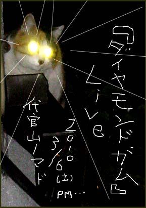 ライブ告知猫ビーム 4