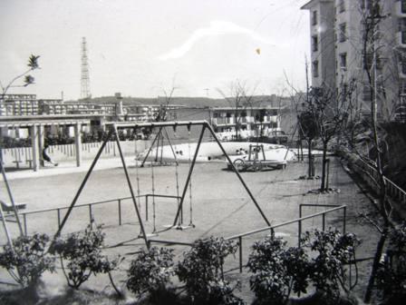 ドーナツ公園写真2