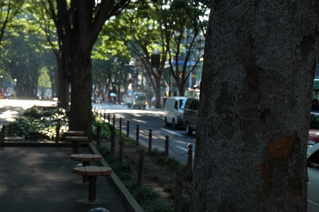 jyouzenji2
