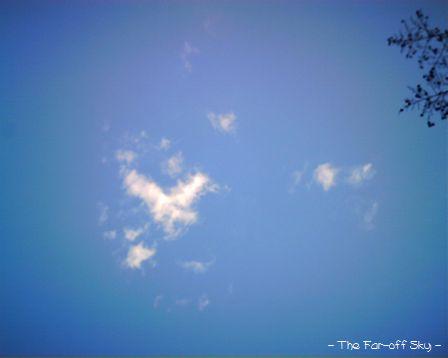 2010-01-22-01.jpg