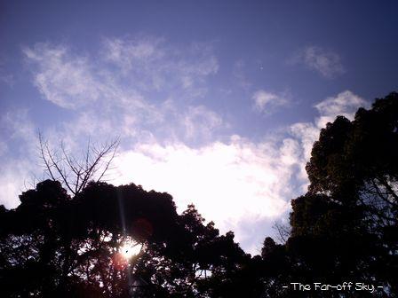 2010-01-22-02.jpg