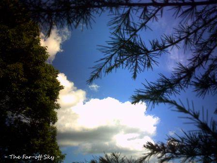 2010-07-28-03.jpg