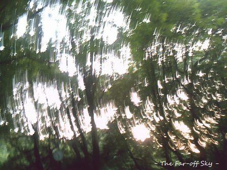 2010-08-27-03.jpg