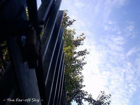 2010-09-23-03.jpg