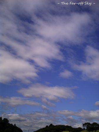 2010-09-26-01.jpg