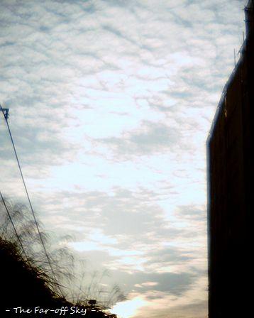 2010-10-28-01.jpg