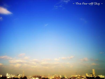 2010-11-11-04.jpg