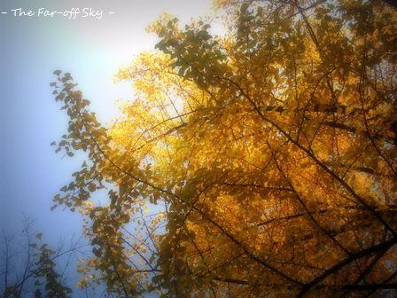 2010-11-14-02.jpg