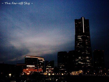 2010-11-28-03.jpg