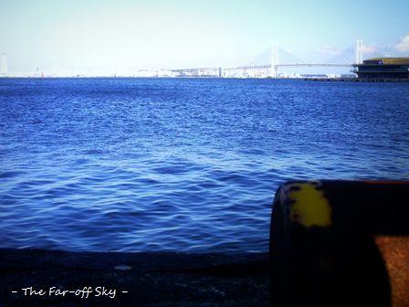 2010-12-10-01.jpg