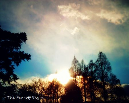 2011-01-20-01.jpg
