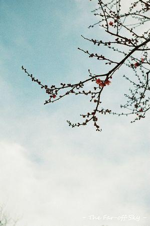 2011-02-11-01.jpg