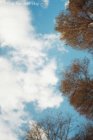 2011-02-11-02.jpg