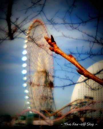2011-03-09-02.jpg