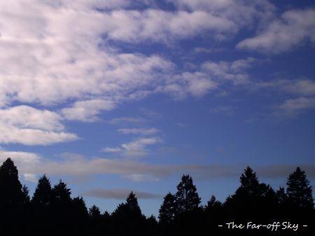2011-03-19-01.jpg