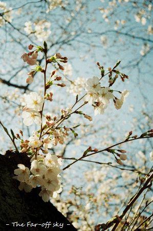 2011-04-11-01.jpg