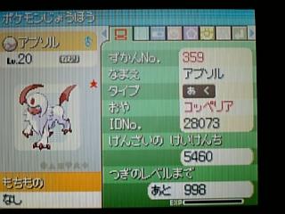 poke_359_02.jpg