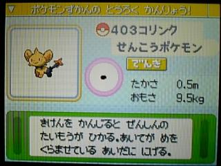 poke_403_01.jpg