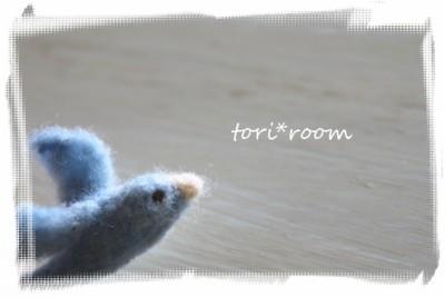 23-4-29青い小鳥