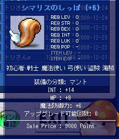 12.17 INT14尻尾