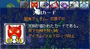 3.14 天狗カード