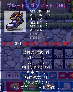 4.9 靴