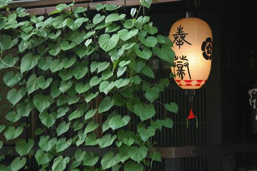 gionmatsuri507140014.jpg