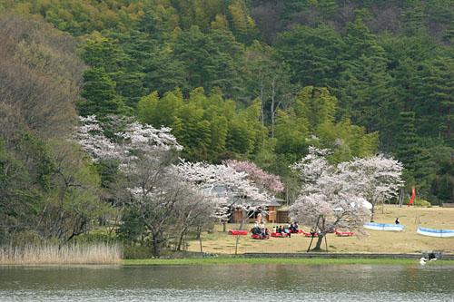 hirosawa0604097894.jpg
