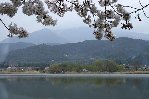 後ろの山は愛宕山
