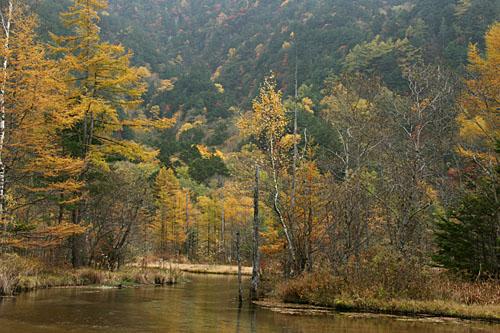 秋の田代池1
