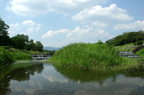 kamogawa0508199956.jpg