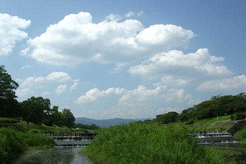 kamogawa0508199961.jpg