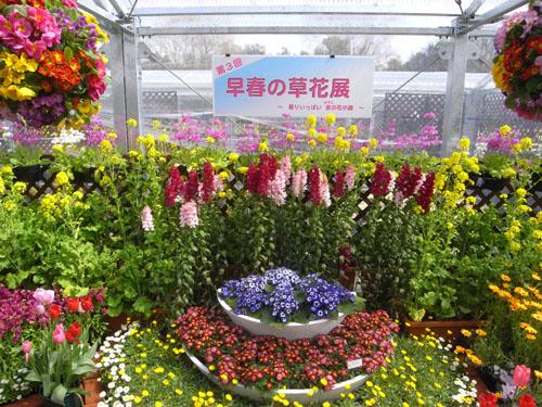 京都府立植物園花回廊入口