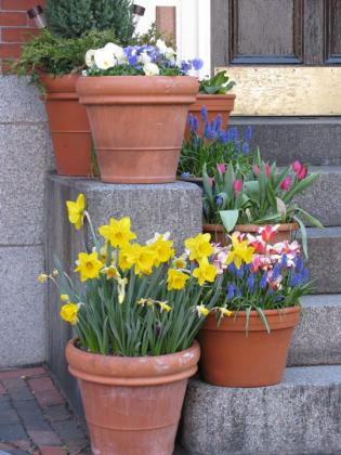 2012_spring_Boston15.jpg