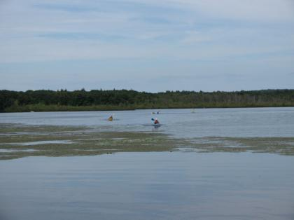 Laborday_picnic_kayaking08.jpg