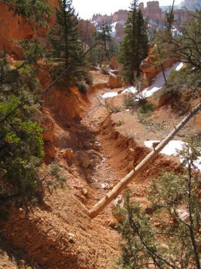 navajo_trail_M_08.jpg