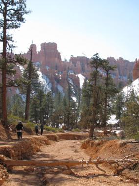 navajo_trail_M_12.jpg