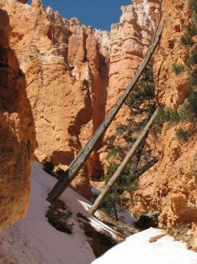 navajo_trail_M_17.jpg