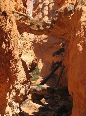 navajo_trail_M_19.jpg