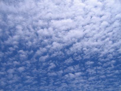 これも今日の空~晴れから曇りになりました。