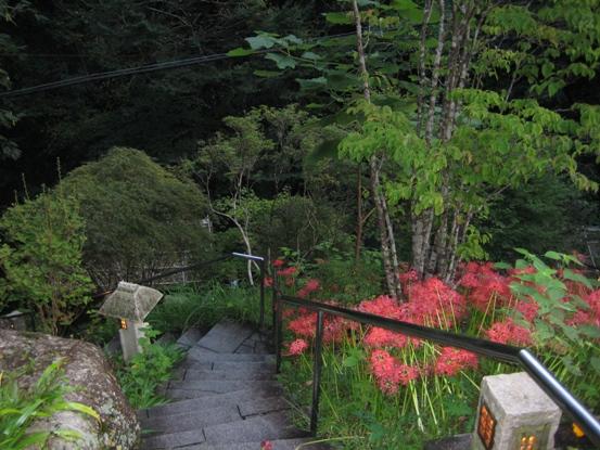 滝の湯階段