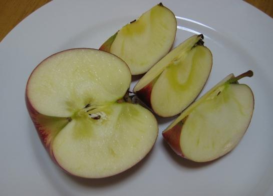 すわりんご2