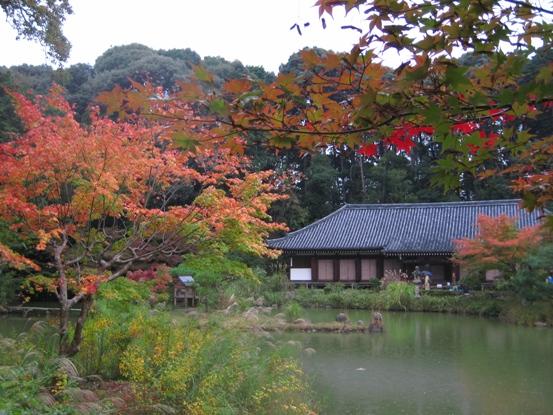 浄瑠璃寺本堂2