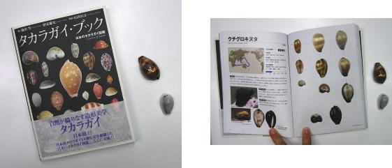 タカラガイ・ブック